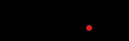 Logo Vidicam